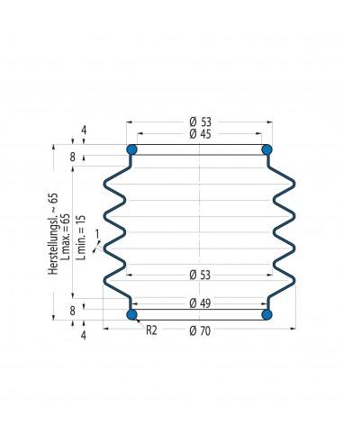 Soffietto V6-00784 CFW Simrit Simrit V6-programma standard v